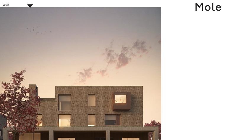 Mole Architects